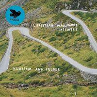 Christian Wallumrod Ensemble - Kurzsam & Fulger (Uk)