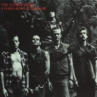 The Flesh Eaters - The Complete Hard Road to Follow Sessions