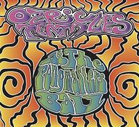 Ozric Tentacles - At The Pongmaster's Ball (W/Dvd) (Uk)