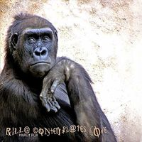 Hardy Fox - Rilla Contemplates Love