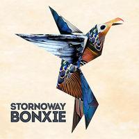Stornoway - Bonxie
