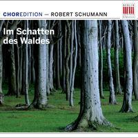 Schumann - Im Schatten Des Waldes (Dig)