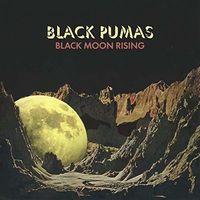 Black Pumas - Black Moon Rising / Fire