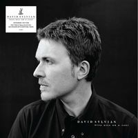 David Sylvian - Dead Bees On A Cake (Expanded Edition)