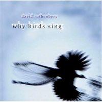 David Rothenberg - Why Birds Sing