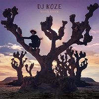 DJ Koze - Knock Knock [Vinyl Box Set]