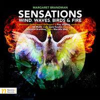 Slovak Philharmonic Orchestra - Brandman: Sensations