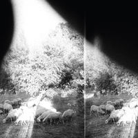 Godspeed You! Black Emperor - Asunder Sweet & Other Distress