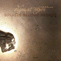 vagrant moon - Bruises Become Bronze