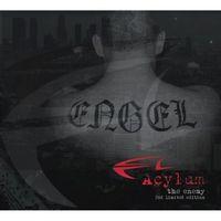 Acylum - The Enemy: Der Feind