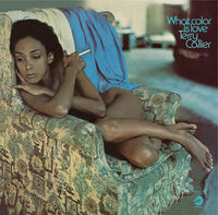 Terry Callier - What Color Is Love (Hol)