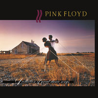 Pink Floyd - A Collection of Great Dance Songs [LP]