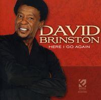 David Brinston - Here I Go Again