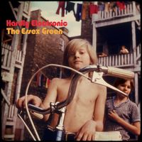 The Essex Green - Hardly Electronic [Indie Exclusive Limited Edition Peak Vinyl]
