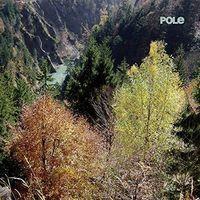 Pole - Wald