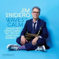 Jim Snidero - Waves Of Calm