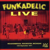 Funkadelic - Live at Meadowbrook