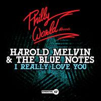 Harold Melvin & The Blue Notes - I Really Love You