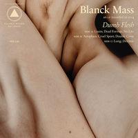 Blanck Mass - Dumb Flesh [Vinyl]