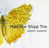 Matthew Shipp Quartet - Elastic Aspects