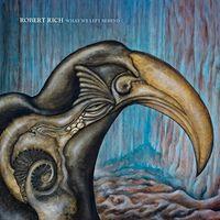Robert Rich - What We Left Behind