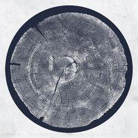 Roy Montgomery - R: Tropic Of Anodyne