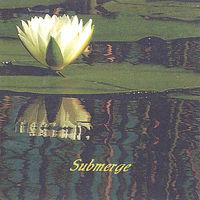 Nick George - Submerge