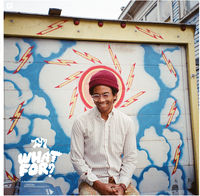 Toro Y Moi - What for