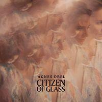 Agnes Obel - Citizen Of Glass [Vinyl]