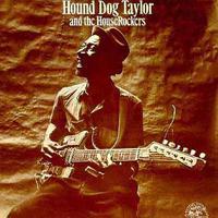 Hound Dog Taylor & the Houserockers - & Houserockers
