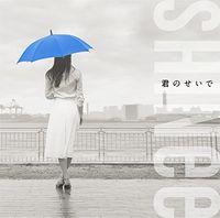 Shinee - Kimi No Seide