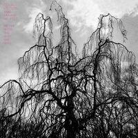 Colin Stetson & Sarah Neufeld - Never Were The Way She Was [Vinyl]