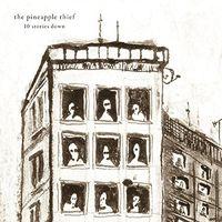 The Pineapple Thief - 10 Stories Down [Vinyl]