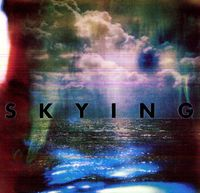 The Horrors - Skying [LP]