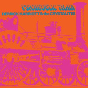 Psychedelic Train [Import]