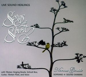 Songs of Spirit-Live Sound Healings