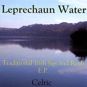 Traditional Irish Jigs & Reels EP