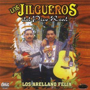 Los Arellano Felix