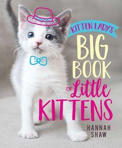 KITTEN LADYS BIG BOOK OF LITTLE KITTENS