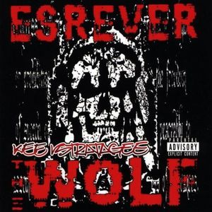 Esrever the Wolf (Reverse the Flow)