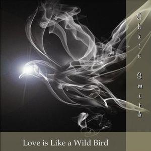 Love Is Like a Wild Bird