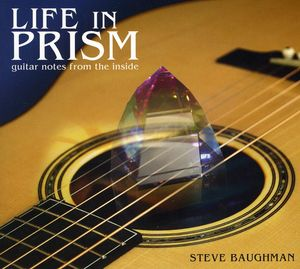Life in Prism: Guitar Notes from Inside