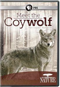 Nature: Meet the Coywolf