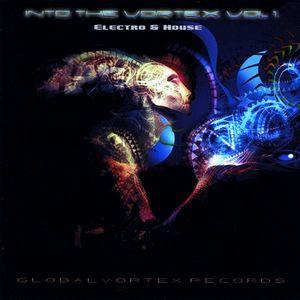 Into Vortex 1: Electro & House /  Various