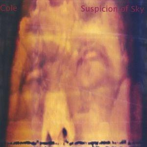 Suspicion of Sky