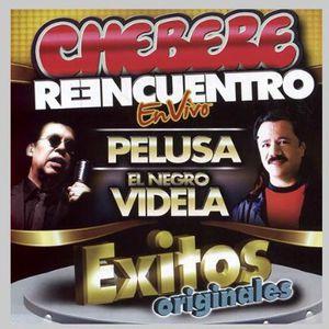 Reencuentro Exitos Originales [Import]