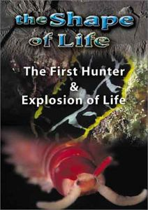 Shape of Life 2: First Hunter & Explosion