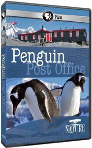 Nature: Penguin Post Office