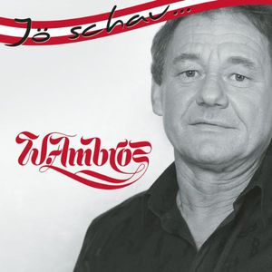 Ambros, Wolfgang : Joe Schau...Wolfgang Ambros [Import]