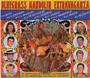 Bluegrass Mandolin Extravaganza /  Various